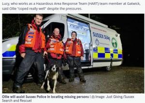 捜索救助犬の資格を得たばかりのボーダーコリー(画像は『The Mirror 2021年9月21日付「Hero dog helps find missing person just hours after qualifying as rescue pooch」(Image: Just Giving/Sussex Search and Rescue)』のスクリーンショット)