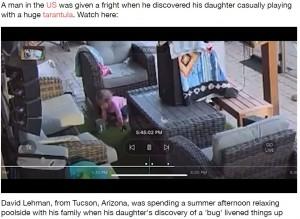 怖いもの知らずでタランチュラと遊ぶ女の子(画像は『LADbible 2021年9月23日付「Terrifying Moment Man Realises 'Bug' Daughter Playing With Is Massive Tarantula」』のスクリーンショット)