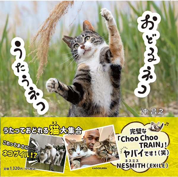 EXILE NESMITHも絶賛、ネコによるダンス?